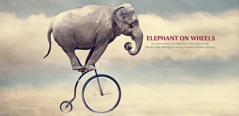 monteverdeatoldstone-elephant-wheels